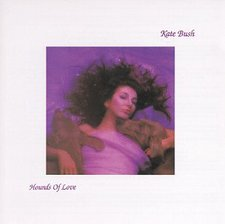 Cover of 1985's Hounds of Love